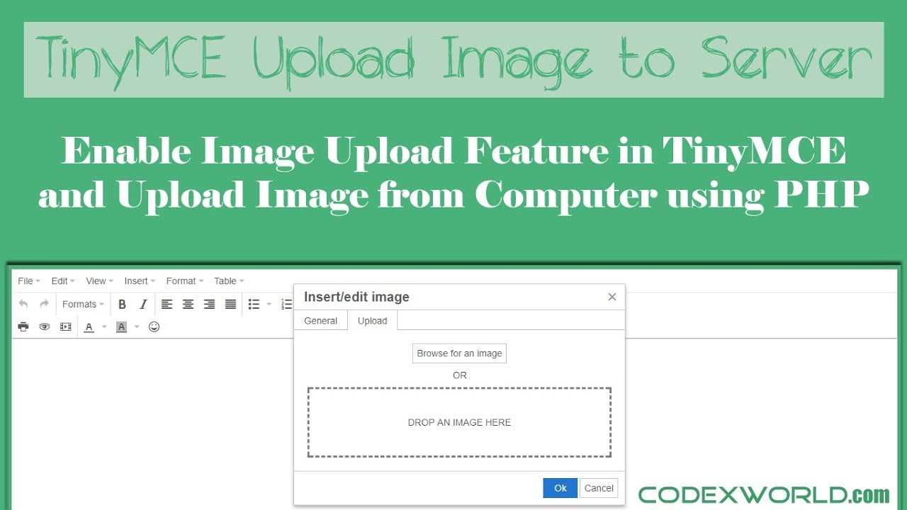 How to Upload Image in TinyMCE Editor using PHP - CodexWorld