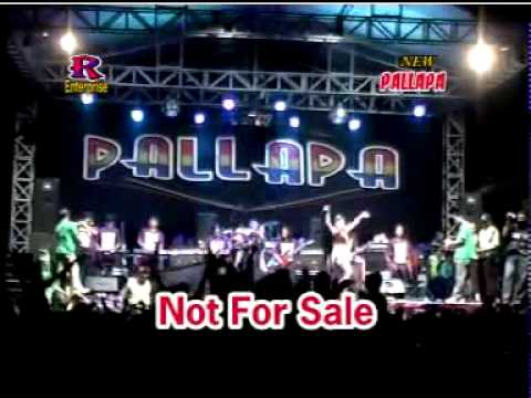 Minyak Wangi   Ayu Arista   New Pallapa Live In Ponggok Gondang   YouTube
