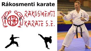 Rákosmenti karate SE