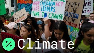 Global Climate Strike: Protesters Rally Around the World for Action on Climate Change