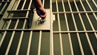 Largest Prisoner Release Pro
