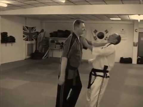Learn Pressure Point Knockout with Master David Martin in Martial Arts Gravesend