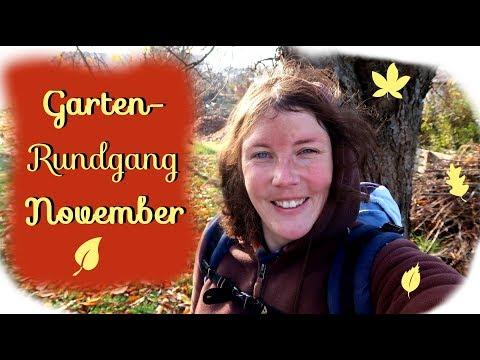 Gartenrundgang November | Wildobsthecke | Kompost aufsetzen