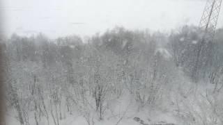 Заполярье. Мурманская область. Лето. Погода 2-го июня 2017 года. Жесть!(, 2017-05-26T18:57:55.000Z)