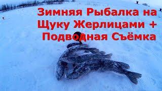 Зимняя Рыбалка на Щуку Жерлицами Щука на Жерлицы Подводная Съёмка Видео
