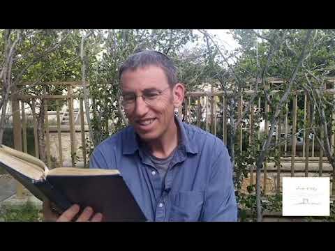 דַּיֵּנוּ | מבט זוגי לשבת הגדול (פרשת וַיִּקְרָא)