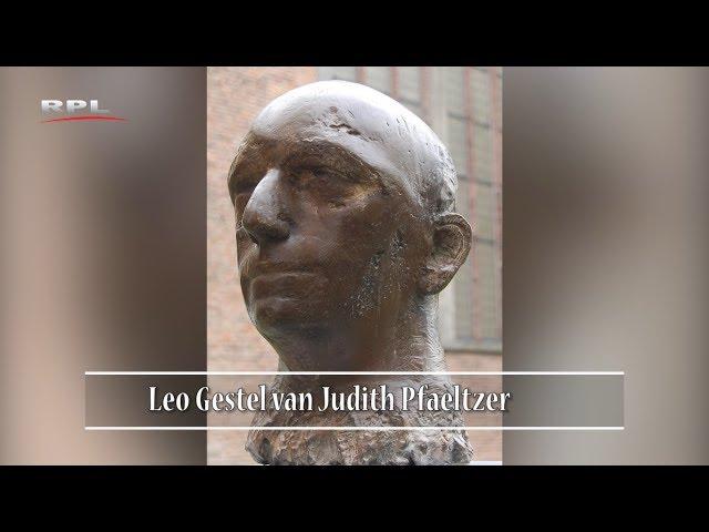 Leo Gestel - Beelden in Woerden - RPL TV Woerden 31 december 2018