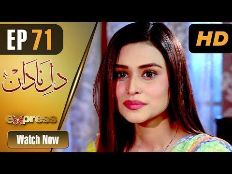 Dil E Nadaan - Episode 71 - Express Entertainment Dramas