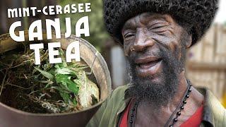 jamaikai cerasee tea fogyás ellen
