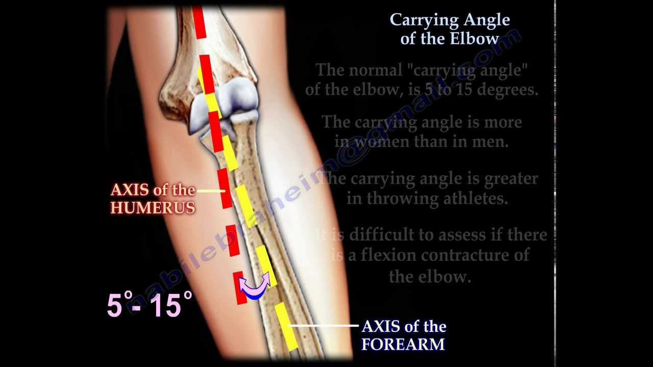 Carrying Angle Of The Elbow Everything You Need To Know Dr
