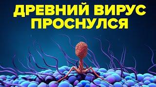 Наука пробудила древние вирусы, неизвестные медицине.