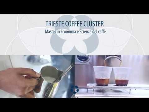 Bazzara Academy: workshop del Master in economia e scienza del caffè