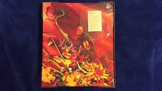 Baixar Paul McCartney Flowers In The Dirt Deluxe Set Unboxing