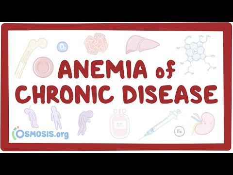 Anemia Of Chronic Disease- Causes, Symptoms, Diagnosis, Treatment, Pathology