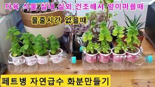 페트병으로!물 마르는 식물 자동급수 화분 만들기!! (…