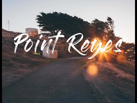 Exploring Point Reyes - Hitting all the best spots in one day!