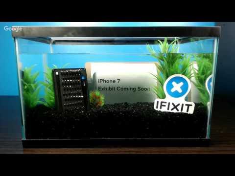 iPhone 7 Swimming Test