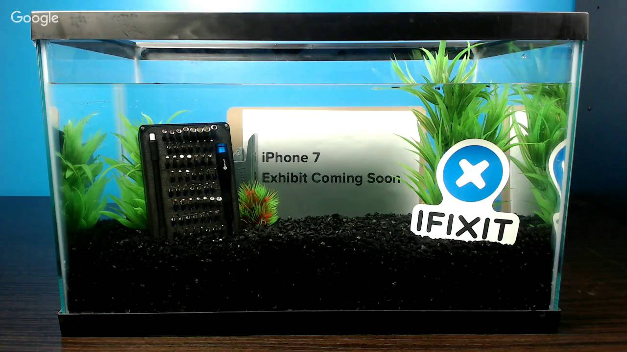 san francisco d8024 4c0f1 We Dropped an iPhone 7 Into a Fish Tank—Here's What Happened - iFixit