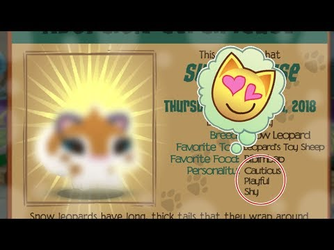 Image of: Update Just Adopted The Cutest Pet Ever animal Jam Play Wild Access Youtube Access Youtube