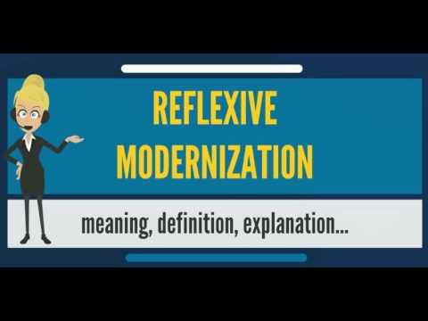 What is REFLEXIVE MODERNIZATION? What does REFLEXIVE MODERNIZATION mean?
