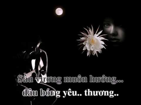 Hoài Mong (Phạm Anh Dũng, lời Vĩnh Phúc) - Ẩn Lan (Karaoke)