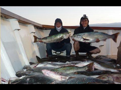 Mirage Sportfishing - 25lb White Sea Bass 07.24.2012