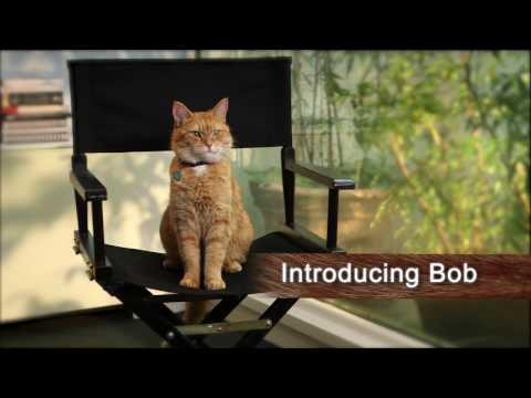 Meet 'Bob' - A STREET CAT NAMED BOB Featurette