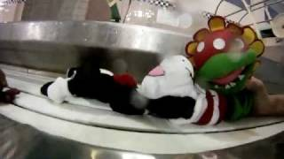 Cat in the Hat Drowns