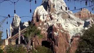 Disney s Animal Kingdom 2014 Tour and Overview - Walt Disney World HD