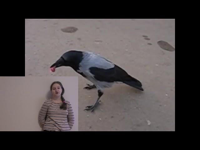 Изображение предпросмотра прочтения – ЕвгенияПолухова читает произведение «Ворона» А.А.Блока