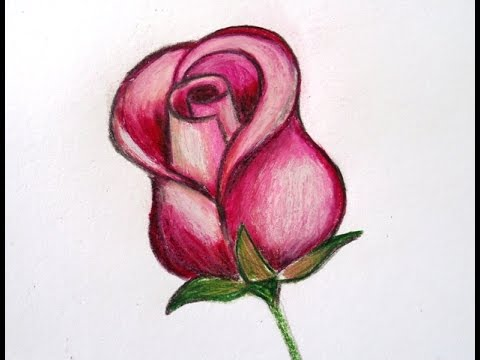 como desenhar uma rosa how to draw a rose youtube