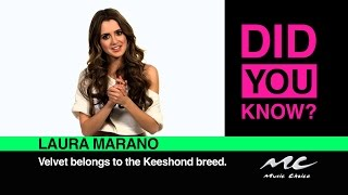 Download Laura Marano: Did You Know? MP3 song and Music Video