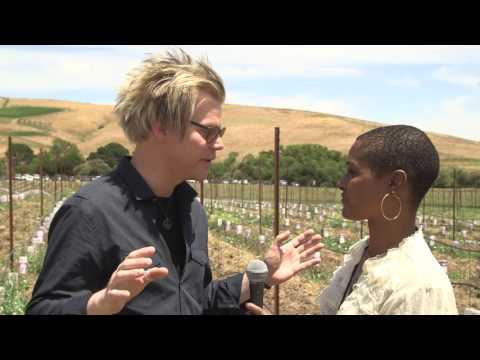 Brian Culbertson Napa Valley Jazz Getaway highlights and interview