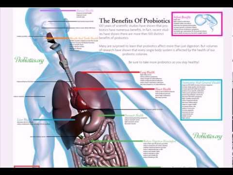top-health-benefits-of-probiotics