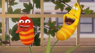 LARVA - MAGIC BEANS | Cartoon Movie | Cartoons For Children | Larva Cartoon | LARVA Official