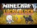 LUCKY BLOCK MOD - Zdobywaj Itemy, Generuj Struktury, Spawnuj Moby! - Minecraft MODY
