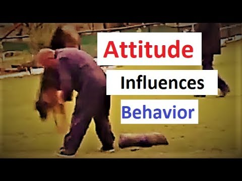 Bonkers and Bad Attitude in Dog Training (K9-1.com)