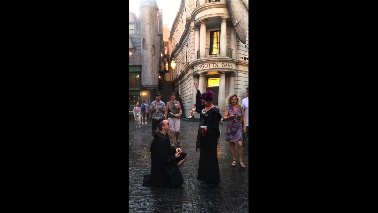 Our Harry Potter Themed Proposal Original Video