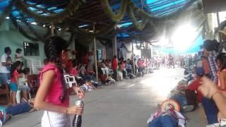 Ocoxuchitl 2015 Quechultenango Gro.