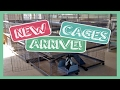 New Cages Arrive - KW Bunny Villas!