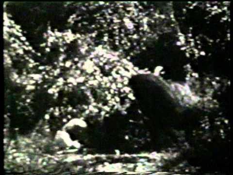 charles-gemora-goes-ape