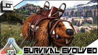 Justin Beaver! ARK: Survival EvolvedE10 ( Ark Ragnarok Map )