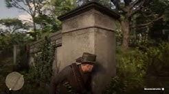 Red Dead Redemption 2 Deckungswechsel