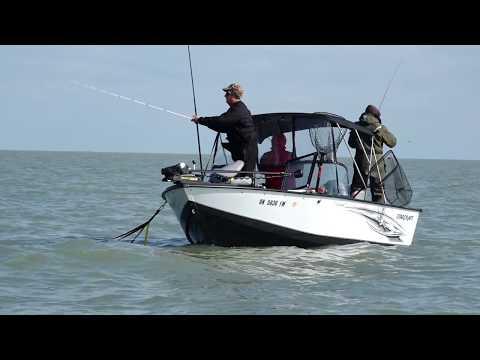 Fishing 411 3 Lake Erie's Blade Runner