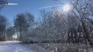 Winter auf dem Steling