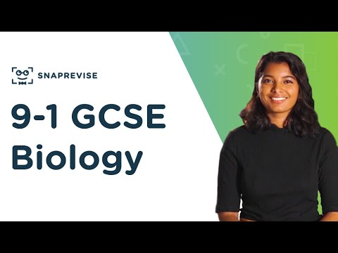 snaprevise:-the-ultimate-9-1-gcse-biology-resource