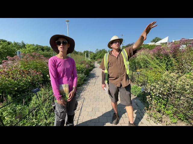 Tour the Piet Oudolf Entry Garden Walk with the Gardeners