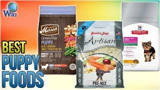 10 Best Puppy Foods 2018
