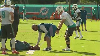 Miami Dolphins open 2017 training camp