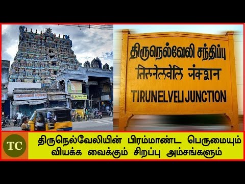 திருநெல்வேலியின் பிரம்மாண்ட பெருமையும் வியக்க வைக்கும் சிறப்பு அம்சங்களும் | Tirunelveli city